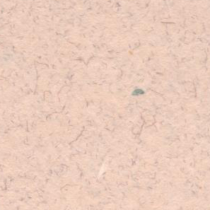 新草木染ハーブマリーゴールド